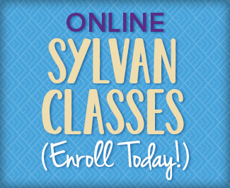 Center Web Classes